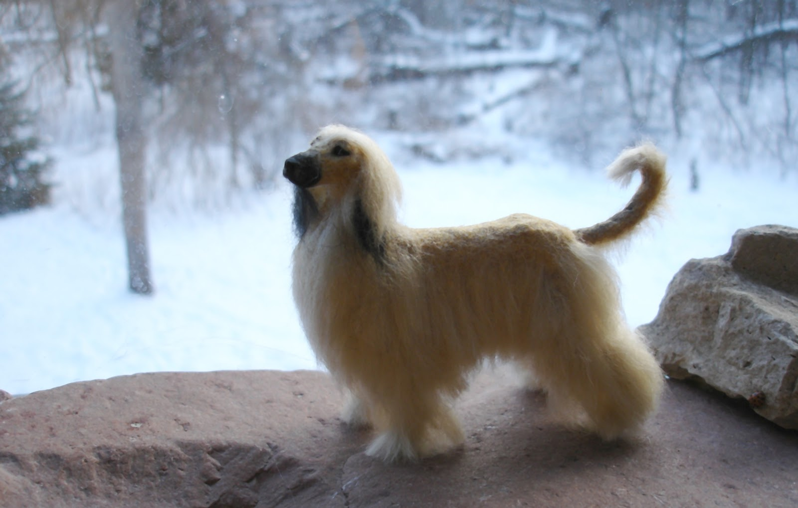 Afghan Hound in winter wallpaper