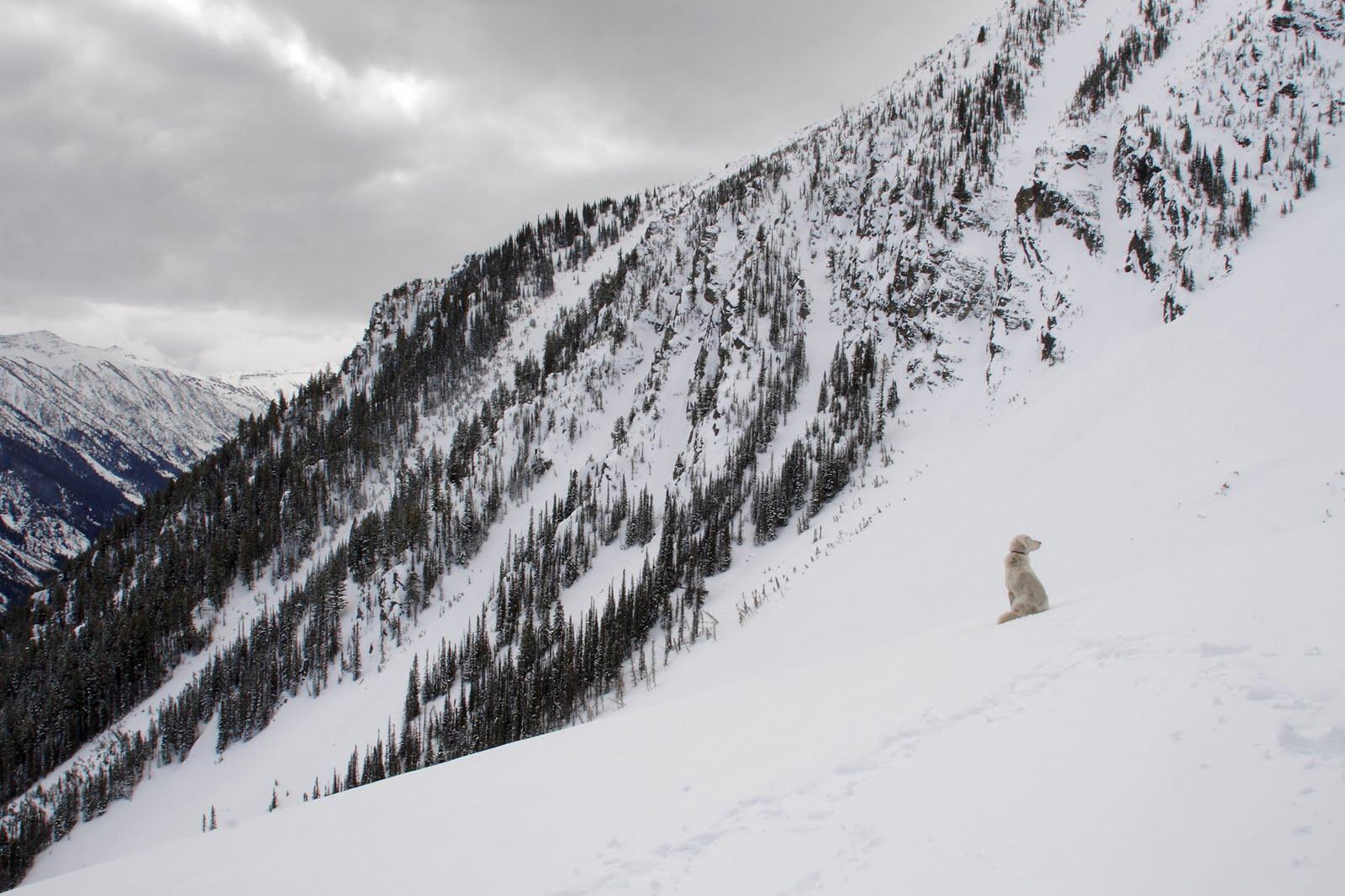 Акбаш в горах фото