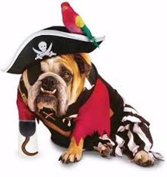 Bulldog pirate wallpaper