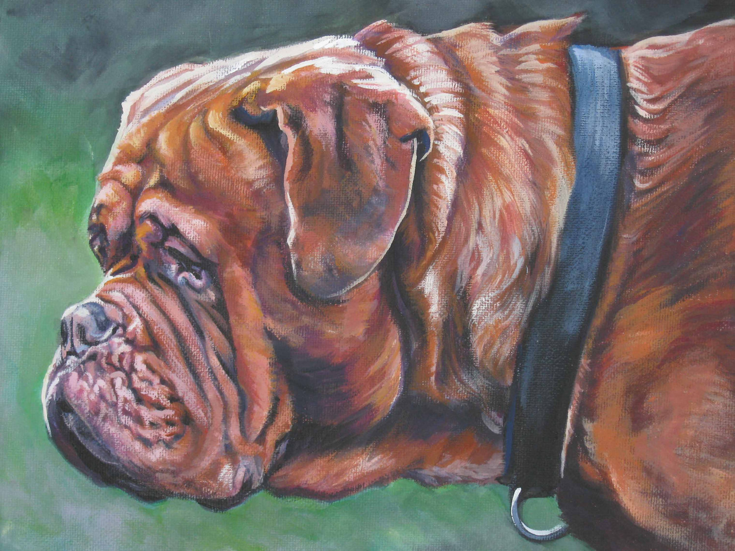 Dogue de Bordeaux picture wallpaper