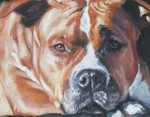 Drawn American Staffordshire Terrier