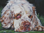 Drawn Clumber Spaniel dog