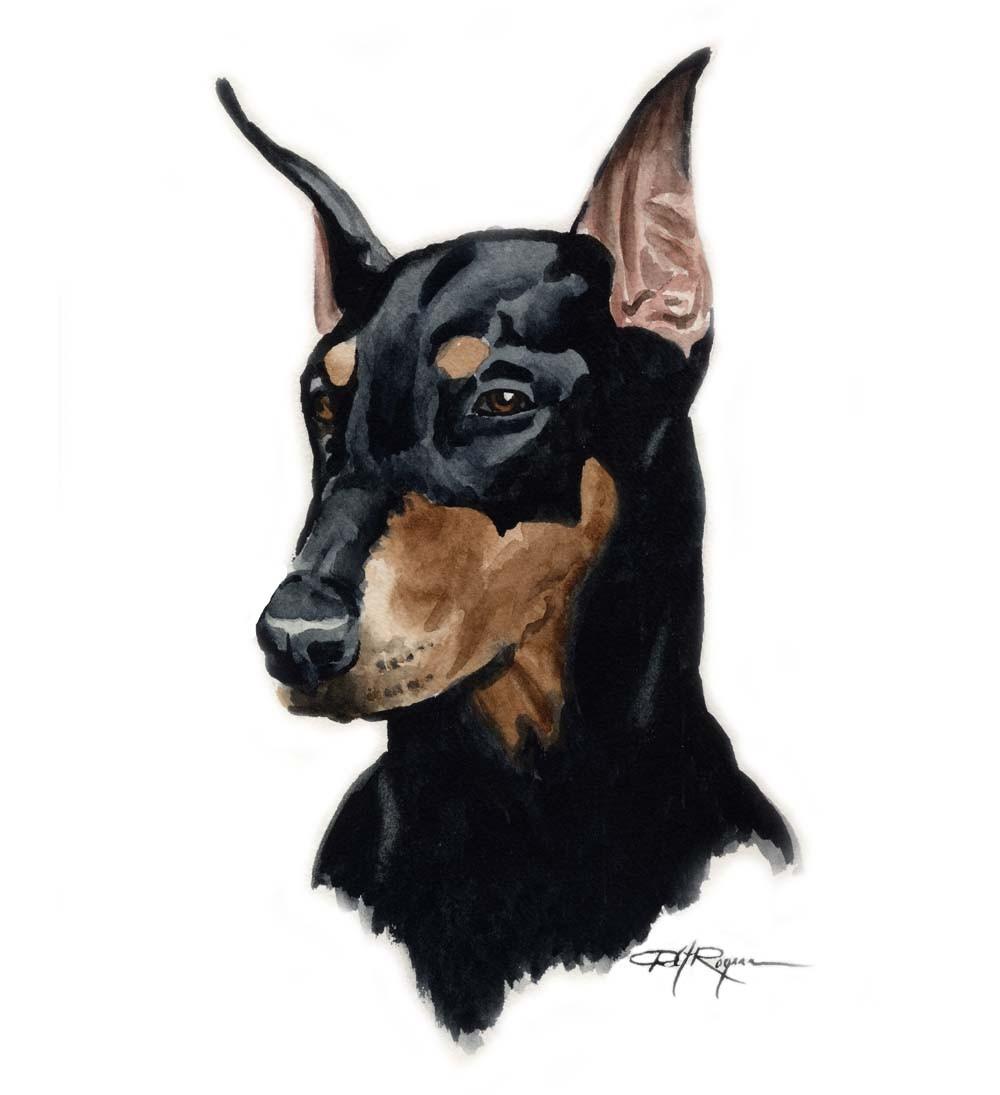Drawn Doberman Pinscher dog wallpaper