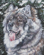 Drawn Eurasier dog