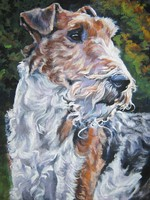 Drawn Fox Terrier,Wire dog