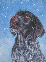 Drawn German Wirehaired Pointer dog