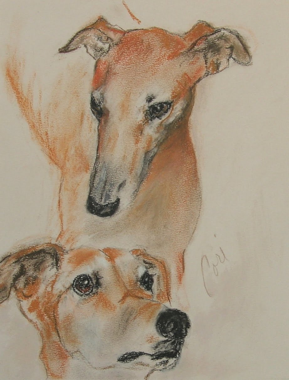 Drawn Greyhound dogs wallpaper