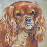 Drawn King Charles Spaniel