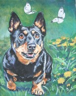 Drawn Lancashire Heeler dog