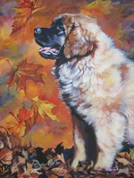 Drawn Leonberger