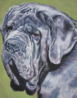 Drawn Neapolitan Mastiff