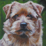 Drawn Norfolk Terrier