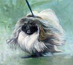 Drawn Pekingese