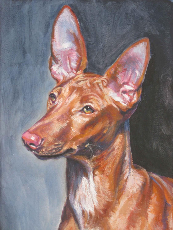 Нарисованная фараонова собака фото