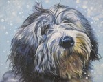 Drawn Polish Lowland Sheepdog