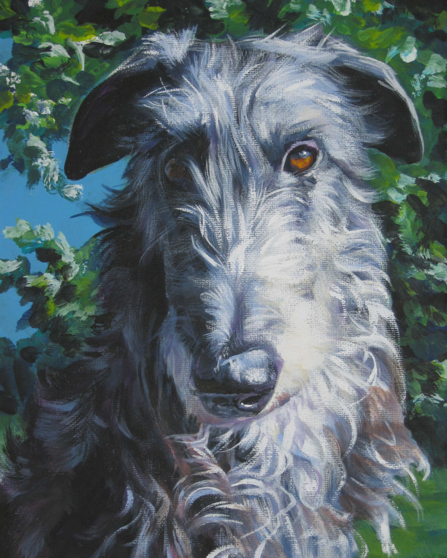Drawn Scottish Deerhound  wallpaper