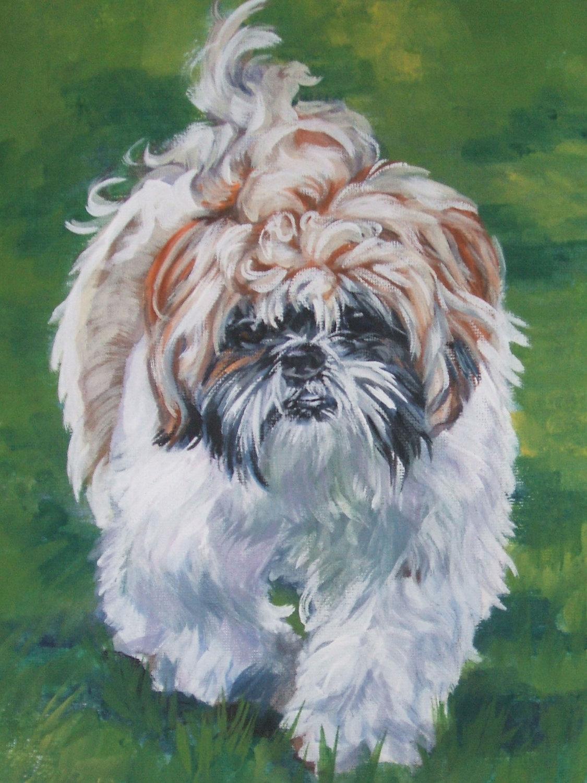 Нарисованная собака ши-тцу фото