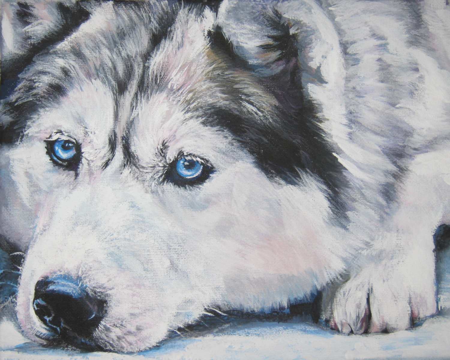 Drawn Siberian Husky dog  wallpaper