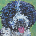 Портрет испанской водяной собаки