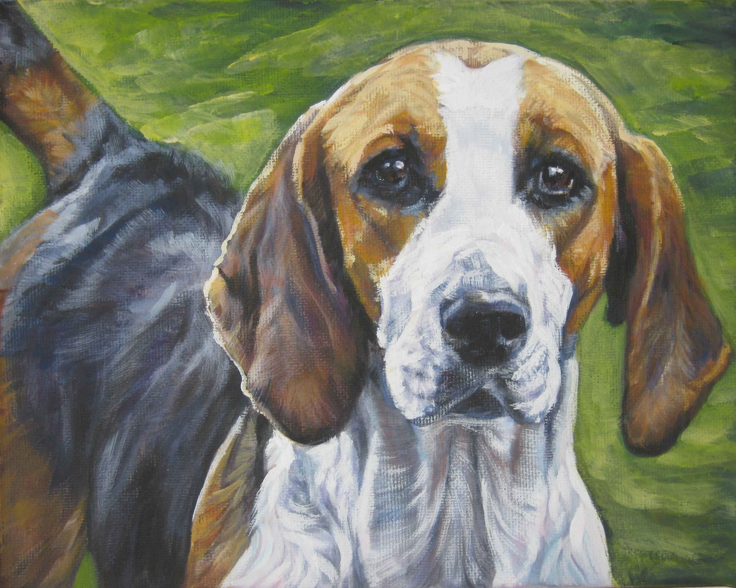 English Foxhound dog photo and wallpaper. Beautiful ...