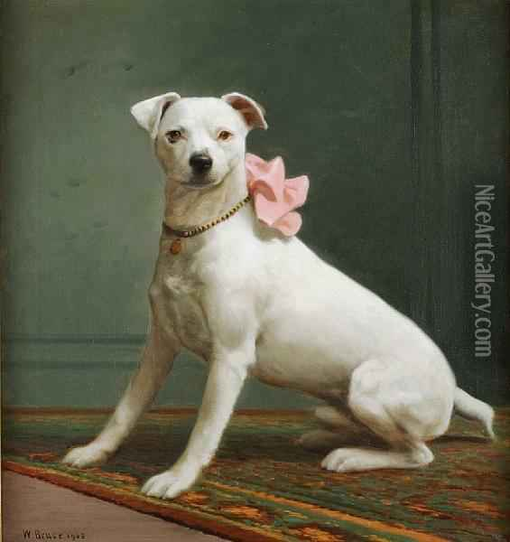 English White Terrier dog girl photo and wallpaper ... American Black And Tan Coonhound Puppies