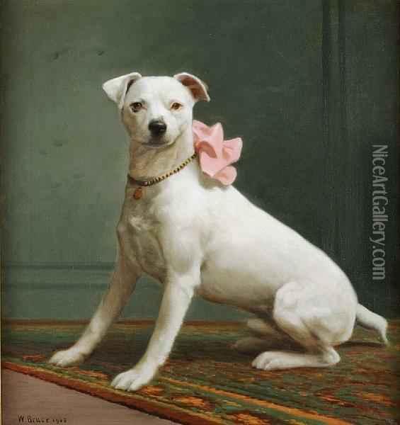 English White Terrier dog girl wallpaper