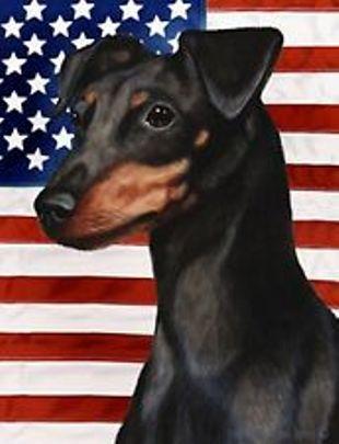 Flag Day Doberman Pinscher фото