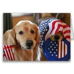 Flag Day Golden Retriever dogs