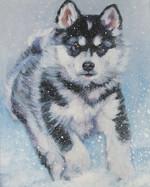 Funny drawn Alaskan Malamute dog