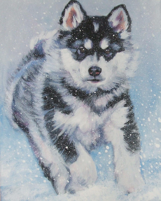 Красивый рисунок аляскинского маламута фото