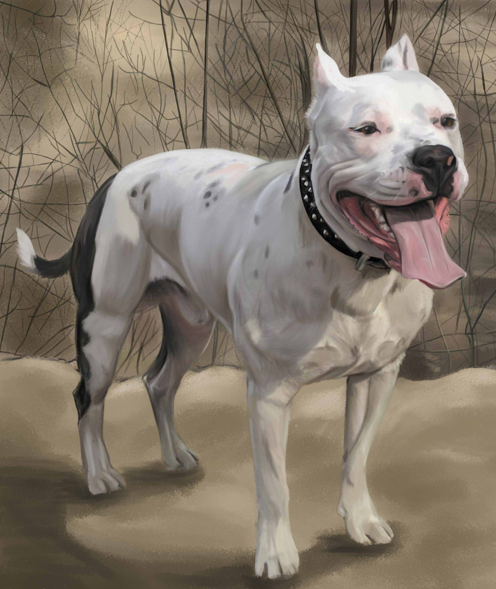 Gothic American Staffordshire Terrier wallpaper