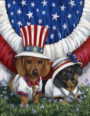 Independence Day Dachshund dogs wallpaper