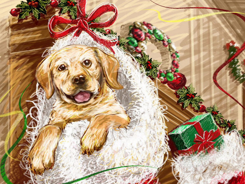 New Year's Day Labrador Retriever wallpaper